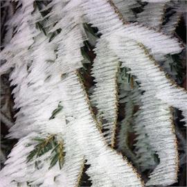 BASCO®dur Cold für den Tiefkühlbereich