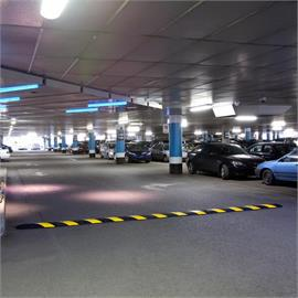Parking garage and parking lot management